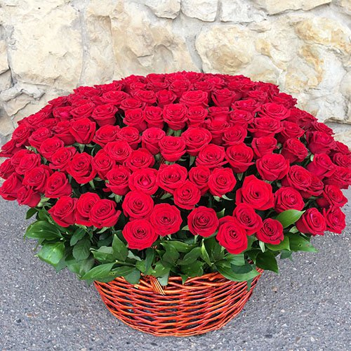 Букет 201 роза в корзине  с доставкой в Самаре